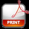 PDF_Print_icon