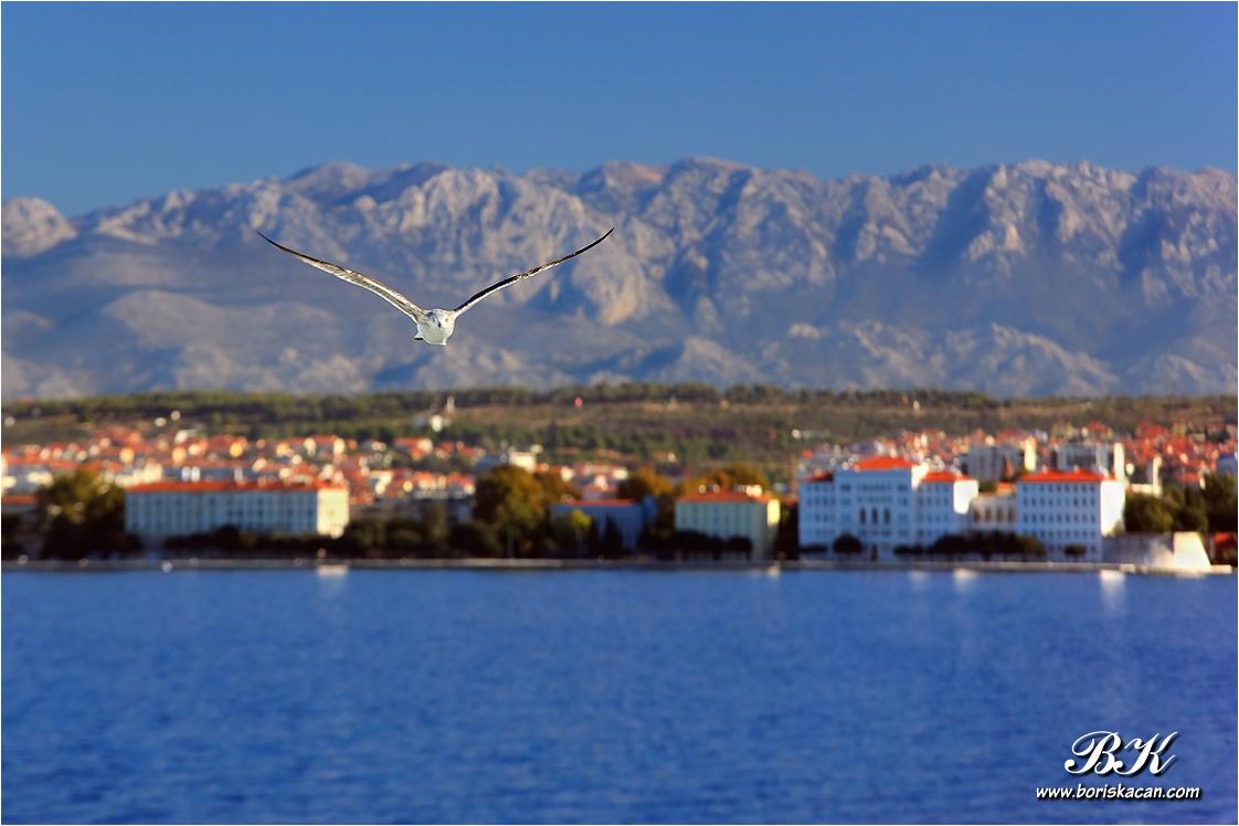 Zadar-000700